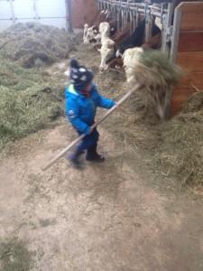 farming at kleinarl